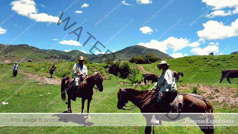 Horseback Riding Maras Moray